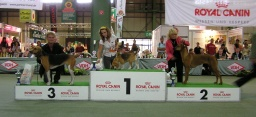 2009  NVP LEPZIG  CAC, National Winner, BOB, 2.místo BEST IN GROUP